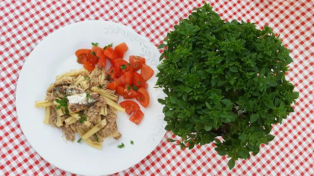 Rolitos com pasta de sardinha e atum, aromatizada com manjerico